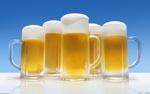 Protein determination in beer according to kjeldahl