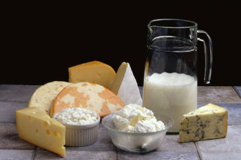 Dairy Product Analysis