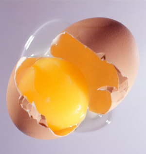 Protein Determination in Eggs