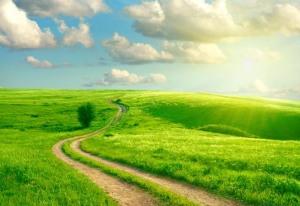 Environmental_landscape lr